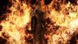 Sephiroth in Flammen