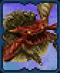 Tetra Master Ameisenlöwe