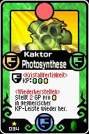 034 Kaktor Photosynthese Pop-Up