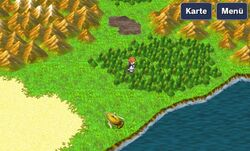 Chocobo Wald FFIII 3D5