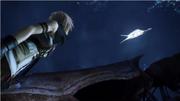Lightning erklärt ihr Ziel