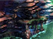Der Fungus Pass