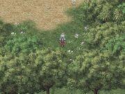 Lebender Wald FFIII 3D1