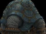 Zirkonschildkröte