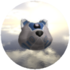 R2D2 Doge