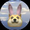 Bunny Doge