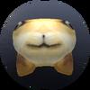 Backwards Doge