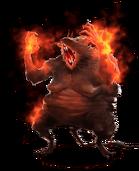 Flaming Queen Rat