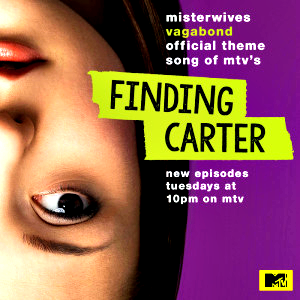 Finding Carter Season 1 promo poster