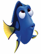 Dory Confused