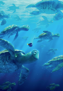 Dory Crush Textless