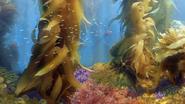Kelp Forest Art