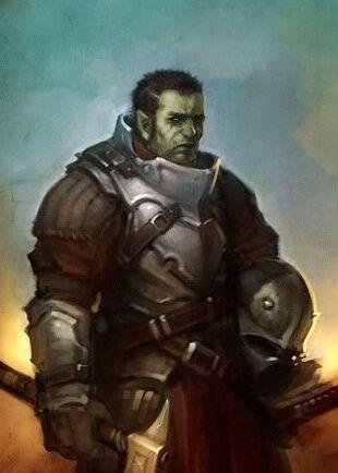 Half Orcs Findle Wiki Fandom Powered By Wikia