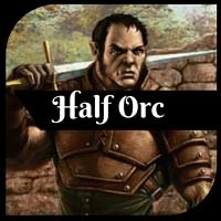 HalforcPort
