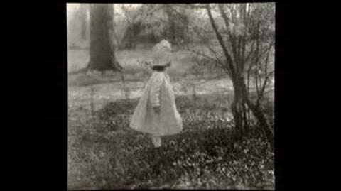 Alfred Stieglitz - Early Work Pictorialism