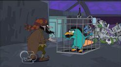 Caged kinderlump perry