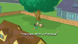 Interview With a Platypus Title