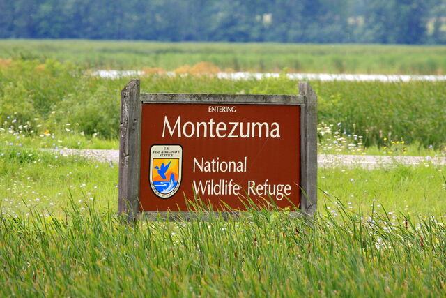 File:Montezuma National Wildlife Refuge, New York entering sign.jpg