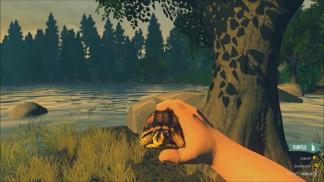 File:Firewatch-river-turtle-3.jpg