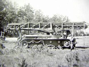 Sturmstegpanzer (Side)
