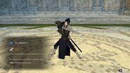 Felix swordmaster