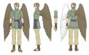 Hawk concept RD
