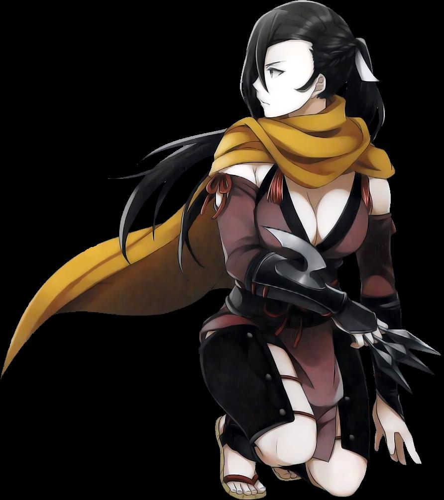 Ninja Build Fire Emblem Fates