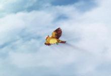 Yune pájaro