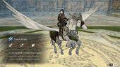 Shamir pegasus knight