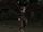 FE10 Hawk Untransformed (Ulki).png