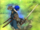 Seliph's Blade (FE13).png