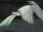 FE10 Heron (Transformed) -Leanne-.png