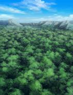 ForêtSerenes