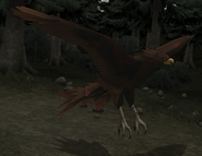 FE10 Hawk Transformed (Ulki)