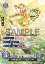 B21-091SR