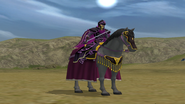Fire Emblem Path of Radiance Paladin Rikard (1)