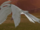 FE10 Heron (Transformed) -Reyson-.png