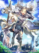 B14-024N artwork