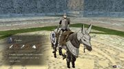Ashe cavalier