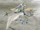 FE10 Falcon Knight (Sigrun).png