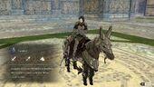Shamir cavalier