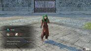 Flayn monk
