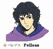Pelleas concept 3
