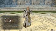 Raphael priest