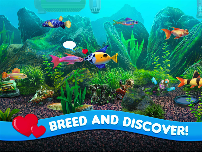 Fish tycoon 2 virtual aquarium wiki fandom powered by wikia for Fish tycoon 2