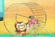 Pamela hamster returns