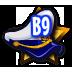 License B9