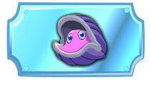 Bashful Clam