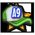 License A9
