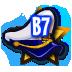 License B7